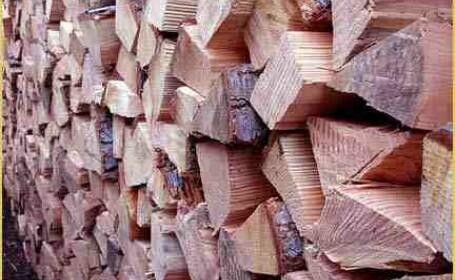 Ca la noi la nimeni! Am ajuns sa importam lemne pentru foc din Bulgaria
