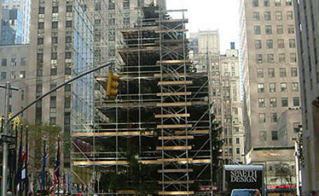 Vezi aici cum arata bradul care va lumina New York-ul!