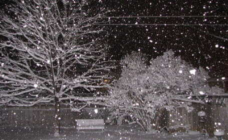 A venit iarna!