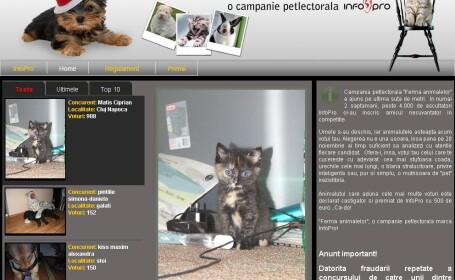 Radio InfoPro premiaza cel mai dragut animalut de casa!