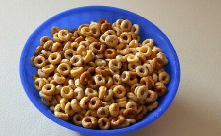 Castron cu cereale