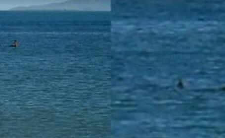 Monstrul din Loch Ness ar fi fost zarit in Australia. \