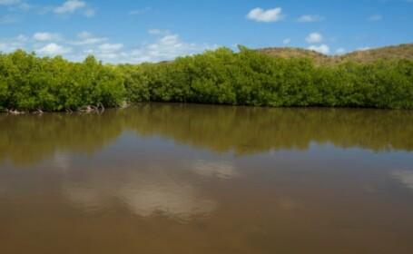 Misterul din Laguna Neagra: Cercetatorii sunt nedumeriti dupa ce apa s-a intunecat