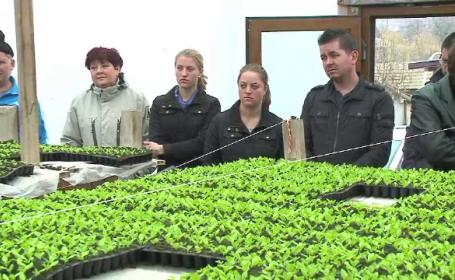 Lectii gratuite despre agricultura BIO. Planul unui tanar care s-a incapatanat sa faca bani din pamantul bunicilor
