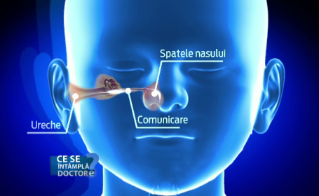 Copiii fac mai des infectii ORL. Cum trebuie tratati pentru a evita deficientele auditive