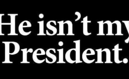 Tot mai multi americani si-au pus aceasta poza la profilul de pe Twitter, dupa alegeri. Ce semnificatie are