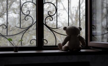 ursulet la fereastra