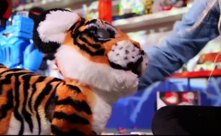 """Producătorii de jucării se pregătesc pentru Crăciun. Dronele și animalele de pluș """"inteligente"""", printre favoritele copiilor"""