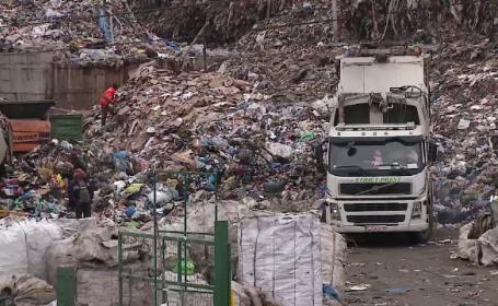 Descoperire șocantă la groapa de gunoi Pata Rât. Femeia a alertat autoritățile