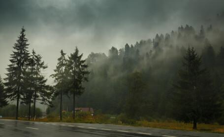 Vremea 24 noiembrie 2017: Cod de ceață, în mai multe județe