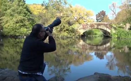 rață Central Park