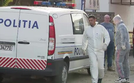 ancheta politie Niculae Badalau