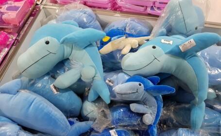 delfini, magazin, tenta sexuala,
