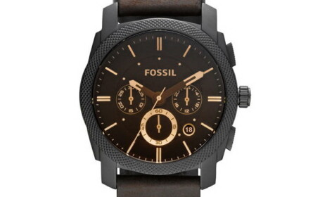 ceas fossil