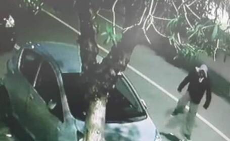 Român filmat când ucidea un pisoi pe stradă, în Italia. Ce pedeapsă riscă. VIDEO
