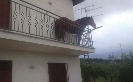 cal balcon