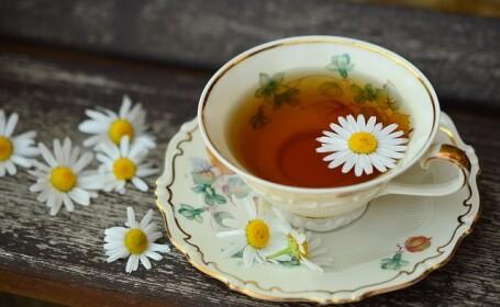Ce combinații de plante folosim în ceai pentru calmarea gâtului iritat și a tusei