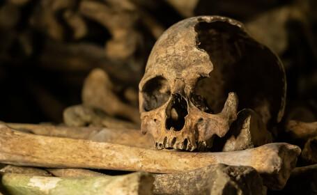 Arheologii au descoperit craniul unui \
