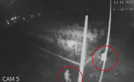 Ce pedeapsă riscă doi indivizi care au furat 60 de pomi din livada unui primar