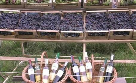 Sarbatoarea vinului