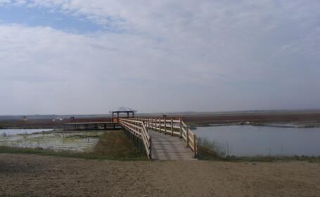 Lacul de la Balta Alba