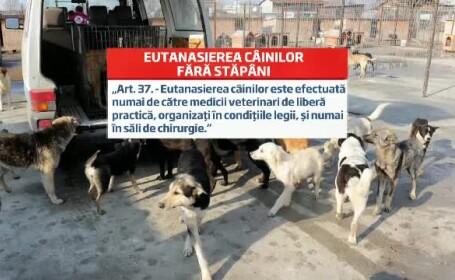 carton legea eutanasierii