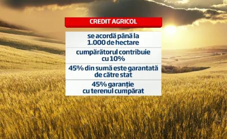 grafica terenuri agricole