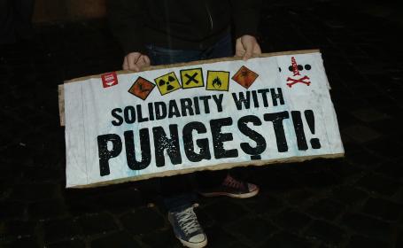 protest Timisoara in solidaritate cu Pungesti