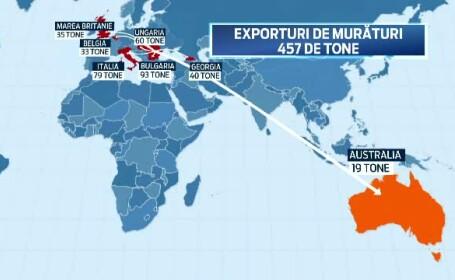 Harta exporturilor de muraturi: 19 tone ajung pana in Australia. Chef Patrizia: Toti prietenii mei pleaca acasa cu un borcan