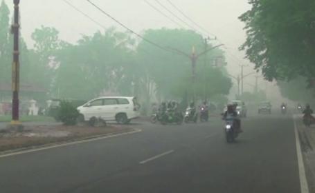 Orase din Indonezia, acoperite de un fum gros, din cauza incendiilor de vegetatie. Efectul fenomenului asupra populatiei