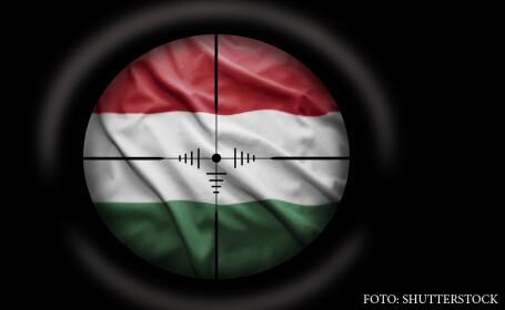 Ce spun politicienii si serviciile maghiare despre \