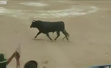 Clipe de cosmar in timpul unei coride din Peru. Un taur a urcat infuriat in tribunele pline cu spectatori. VIDEO