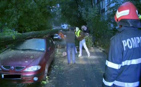 Un copac s-a prabusit peste trei autoturisme in Sectorul 3 al Capitalei. \