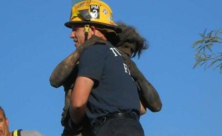 S-a urcat pe acoperisul casei si a tipat timp de 4 ore. Ce-au descoperit pompierii cand au ajuns la fata locului. FOTO