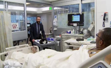 Motanul Duke, inclus intr-un program de terapie pentru pacientii dintr-un spital din San Francisco. Reactia bolnavilor