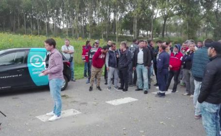 Situaţie disperată pentru 200 de români care lucrează în Olanda. Angajatorul dă vina pe statul român