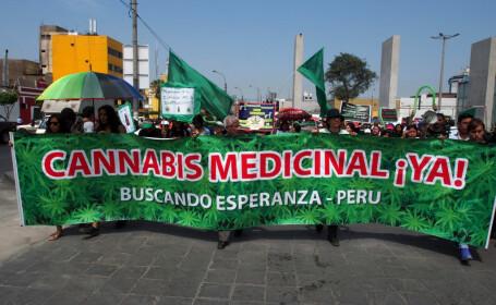 Mai multe mame, prinse producând ilegal ulei de canabis, au determinat legalizarea marijuanei în Peru