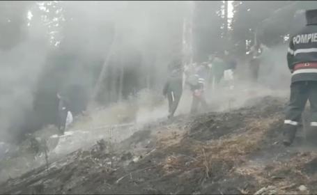 Pârjol în Dâmbovița, unde aproape un hectar de pădure a ars
