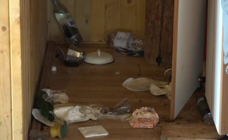 Un urs flămând a devastat o cabană din Sovata. \