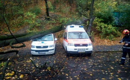 Copac cazut peste ambulanta