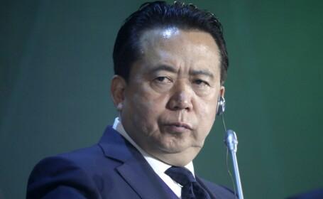 Meng Hongwei, sef Interpol
