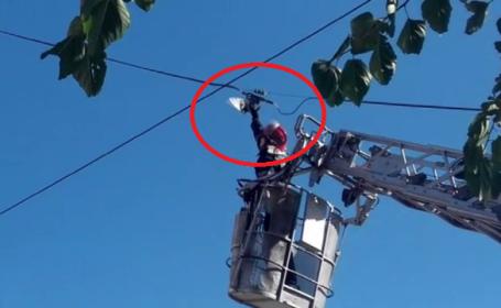 Operațiune de salvare a unui porumbel în Bârlad
