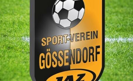 Un club de fotbal din Austria a oferit \
