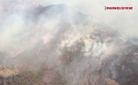 Incendiu puternic într-o pădure din Caraș-Severin. Focul ar fi fost pus intenționat