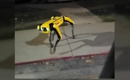 cainele robot