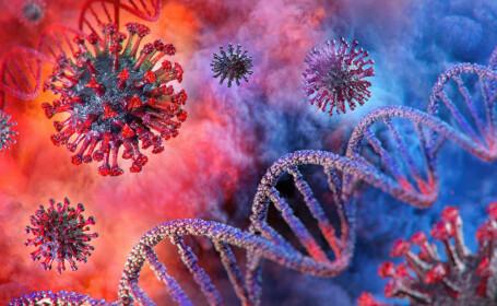 ADN coronavirus