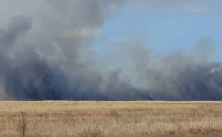 Un nou incendiu de vegetație a izbucnit în Vadu. Peste 100 ha au fost cuprinse de flăcări