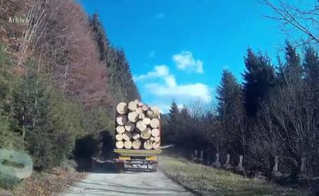 Transport de lemne