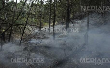 Buzau: un incendiu le-a dat batai de cap pompierilor