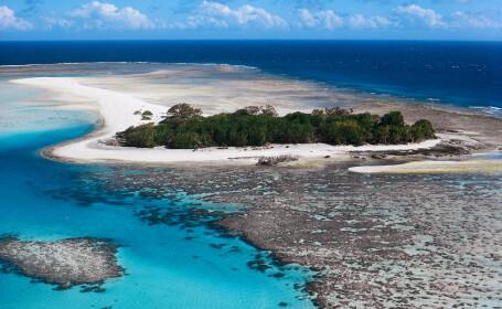 Cercetatorii australieni au descoperit sute de specii marine noi